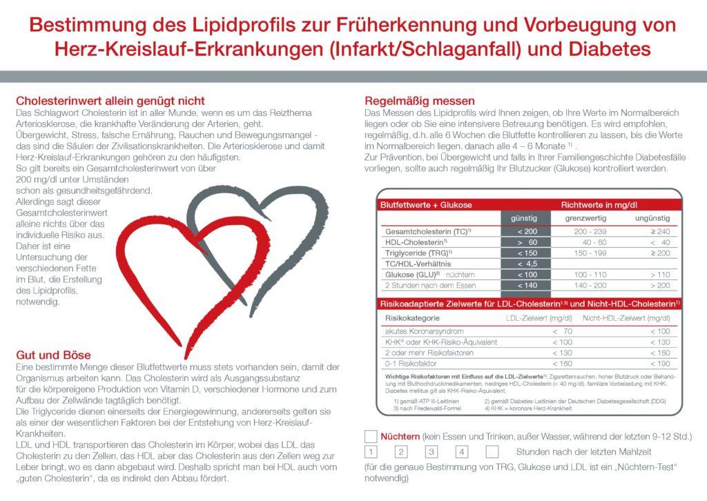 Blutuntersuchung Lipidprofil Gesundheit Infografiken
